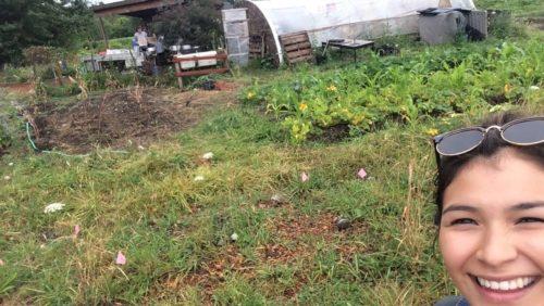 RIC sage selfie garden