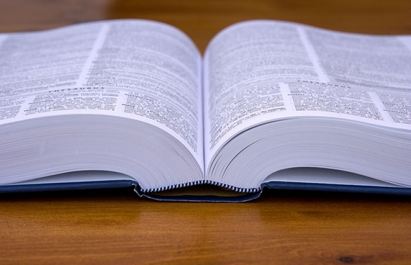 An open dictionary, no words legible.